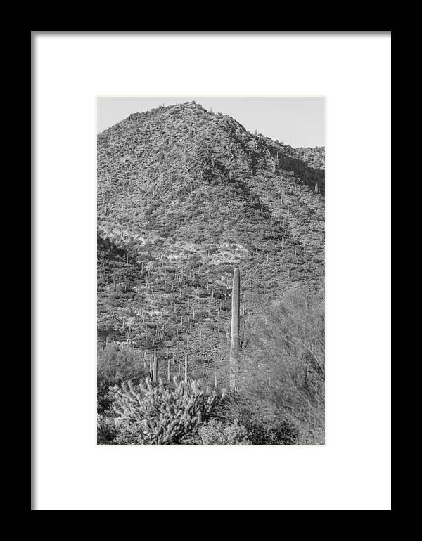 Sonoran Desert Framed Print featuring the photograph Maricopa Hills by Aaron Burrows