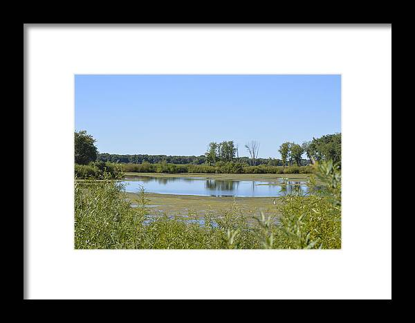 Marsh Framed Print featuring the photograph Marshland by Bonfire Photography