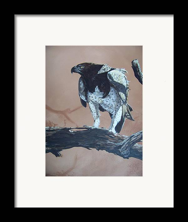 Martial Eagle Framed Print featuring the painting Martial Eagle by Robert Teeling