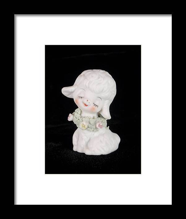Lamb Framed Print featuring the photograph Mary Had A Little Lamb by Kathy Clark