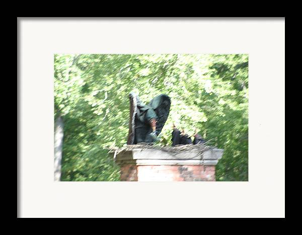 Maryland Framed Print featuring the photograph Maryland Renaissance Festival - People - 121272 by DC Photographer