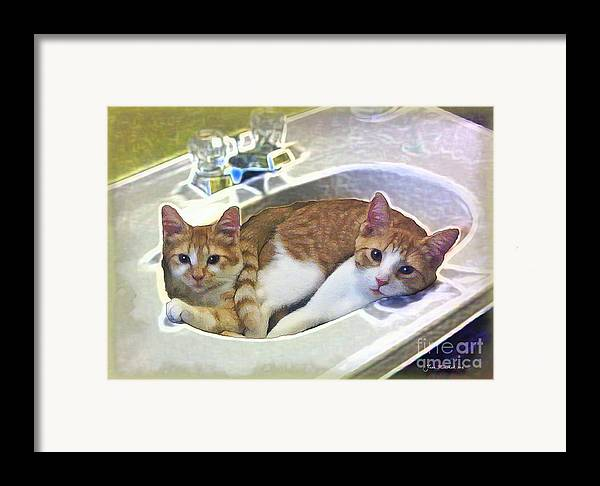 Cats Framed Print featuring the photograph Mary's Cats by Joan Minchak