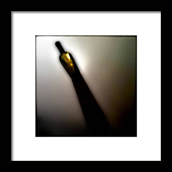 Wine Framed Print featuring the photograph Mas Chardonnay by Doug Heslep