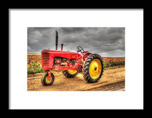 1950 Framed Print featuring the photograph Massey by Heidi Smith