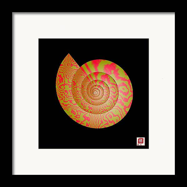 Conch Framed Print featuring the photograph Math Conch by GuoJun Pan