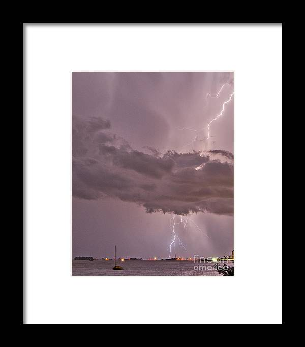 Florida Framed Print featuring the photograph Mauve Madness by Stephen Whalen