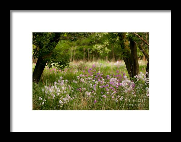 Wildflowers Framed Print featuring the photograph Meadow Wildflowers by Michael Shake