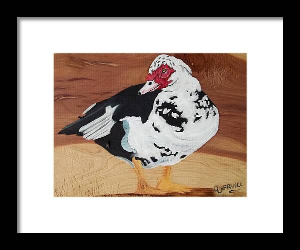 Merganser Duck Framed Print featuring the painting Merganser Duck Painted On Cedar by Debbie LaFrance