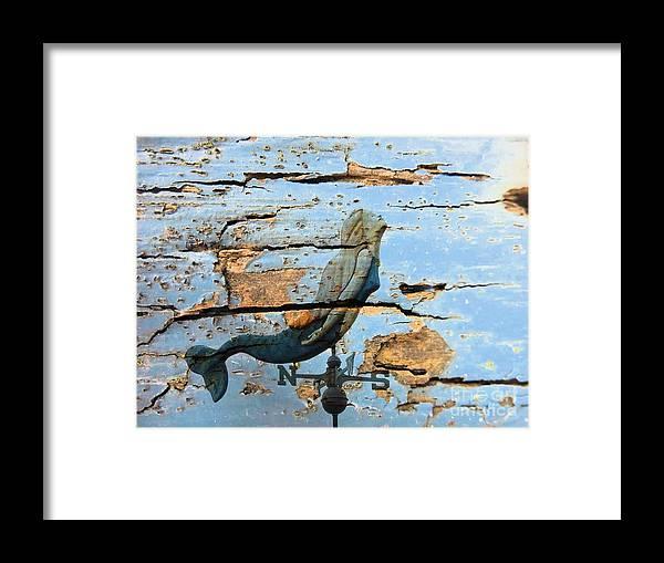 Marcia Lee Jones Framed Print featuring the photograph Mermaid by Marcia Lee Jones