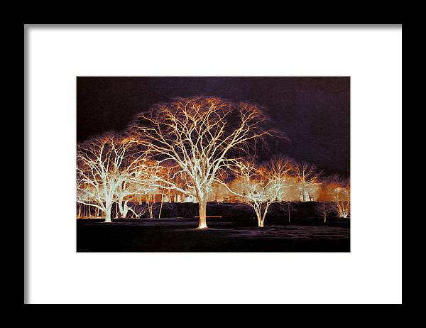 Glowing Framed Print featuring the photograph Midnight Glow by Shawna Rowe