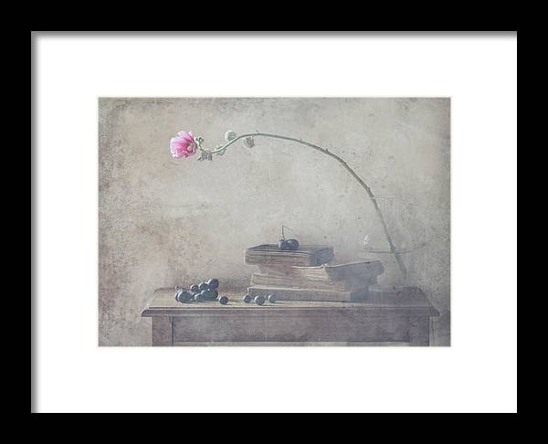 Still Life Framed Print featuring the photograph Mild Morning Of October by Delphine Devos