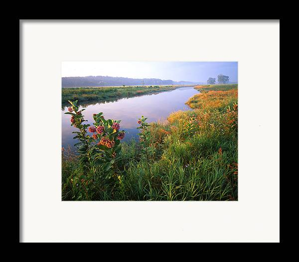 Sunset Framed Print featuring the photograph Milk Weed Morning by Ray Mathis