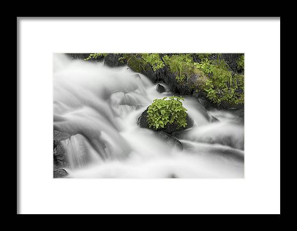 Milky Stream Framed Print featuring the photograph Milky Stream by Wes and Dotty Weber