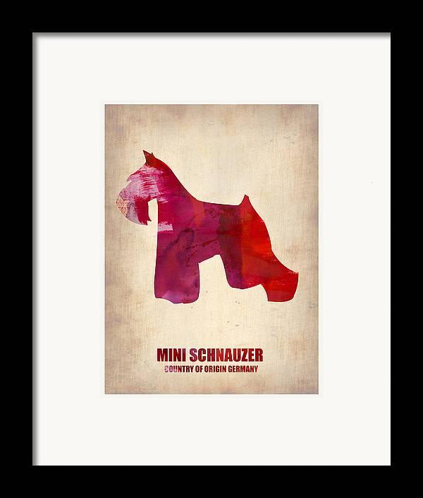 Miniature Schnauzer Framed Print featuring the painting Miniature Schnauzer Poster by Naxart Studio