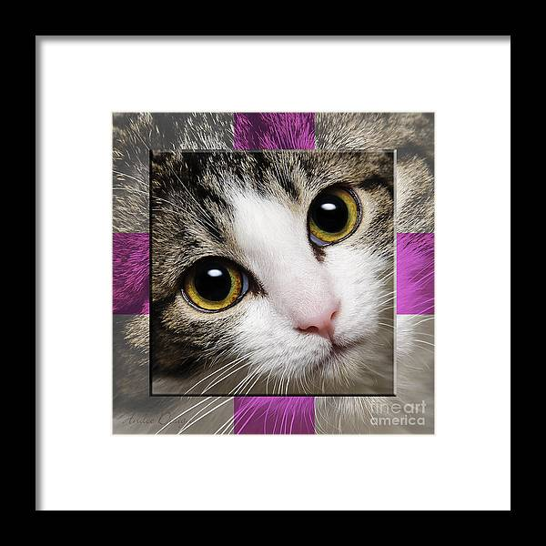 Abstract Framed Print featuring the photograph Miss Tilly The Gift 1 by Andee Design
