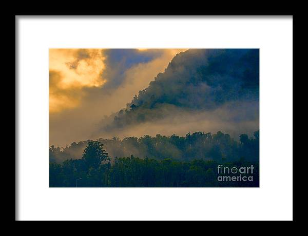 Trees Framed Print featuring the photograph Mist amongst trees by Sheila Smart Fine Art Photography