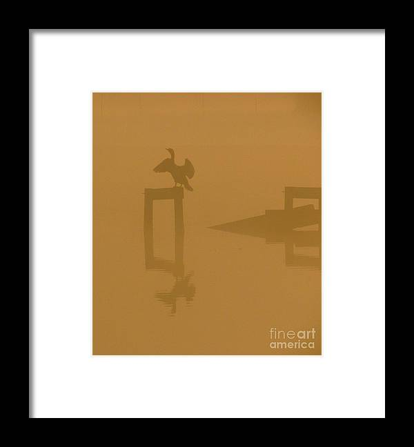 Nature Framed Print featuring the photograph Mist At Dawn 04 by Rrrose Pix