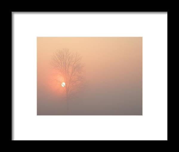 Kentucky Framed Print featuring the photograph Misty Morning by Carlee Ojeda