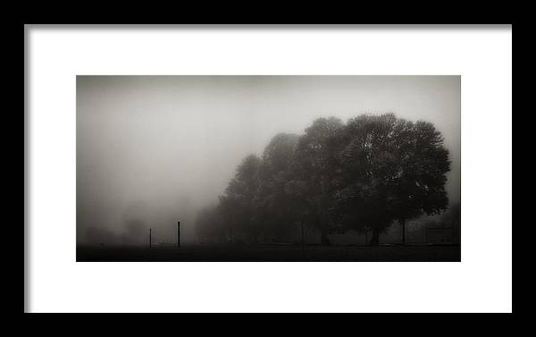 Atmosphere Framed Print featuring the photograph Misty Trees In Early Morning Fog by Peter v Quenter