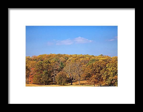 Autumn Framed Print featuring the digital art Mixed Fall by Leeon Photo