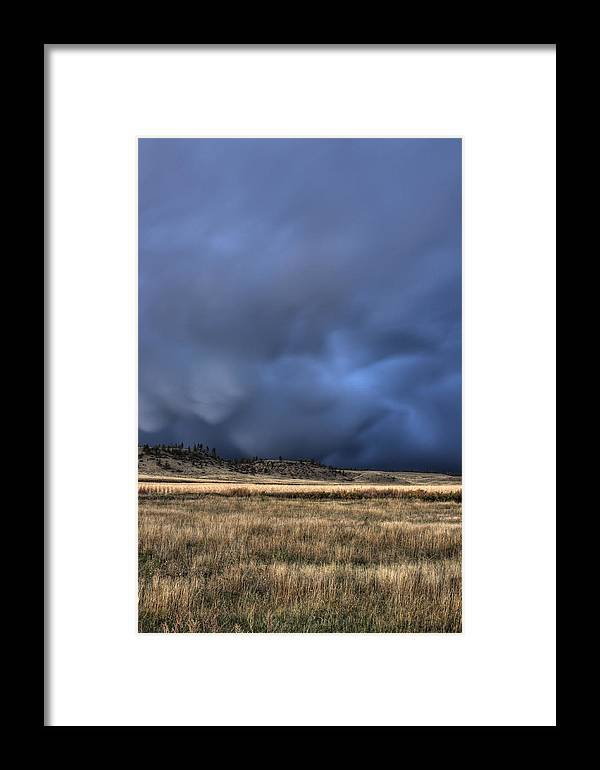 Prairie Framed Print featuring the photograph Montana Starfish by Cynthia Bruner