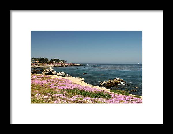 Monterey Framed Print featuring the photograph Monterey Bay by Donna Blackhall