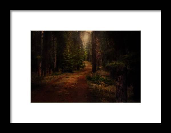 Moon Framed Print featuring the digital art Moon Light by Diane Dugas