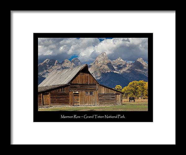 Mormon Framed Print featuring the photograph Mormon Row Poster by Kathleen Bishop