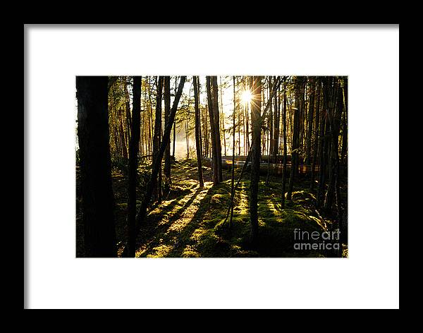 Photography Framed Print featuring the photograph Morning In Canoe Country by Larry Ricker