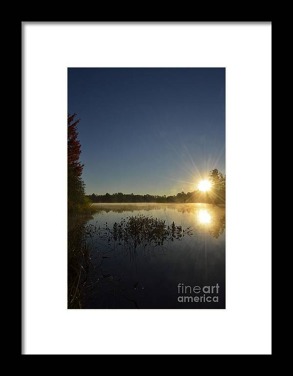 Autumn Framed Print featuring the photograph Morning In The North Woods by Birgit Tyrrell