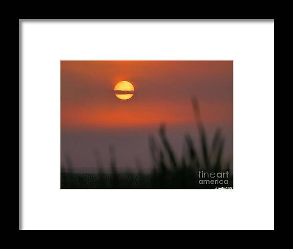 Sunrise Framed Print featuring the photograph Morning Layers by Amalia Suruceanu