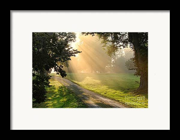 Country Framed Print featuring the photograph Morning On Country Road by Olivier Le Queinec