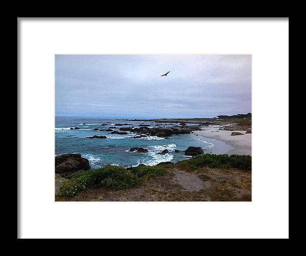 Morning Stretch Framed Print featuring the photograph Morning Stretch by JP McKim