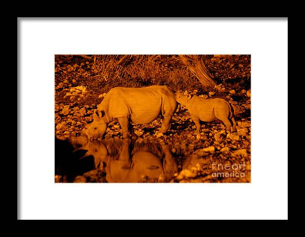 Rhinos Framed Print featuring the photograph Mother And Child by Alison Kennedy-Benson