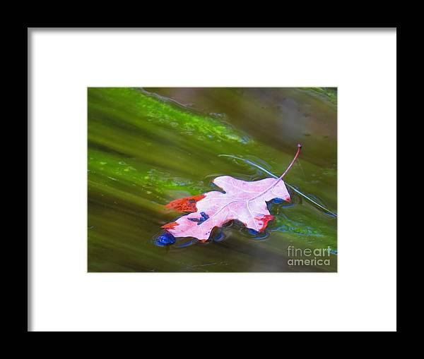 Abstract Framed Print featuring the photograph Mothers abstract 04 by Rrrose Pix