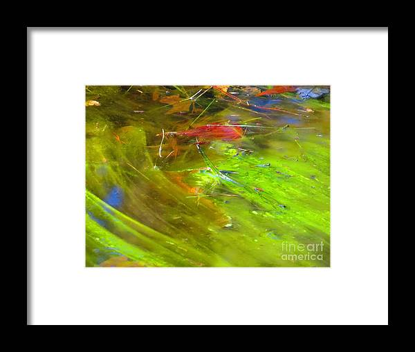 Photography Framed Print featuring the photograph Mothers abstract 05 by Rrrose Pix