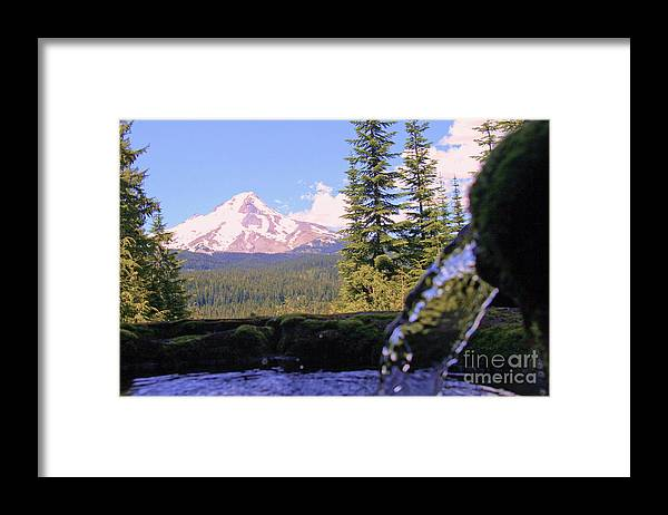 Mountains Framed Print featuring the photograph Mount Hood From Buzzard Point by Cari Gesch