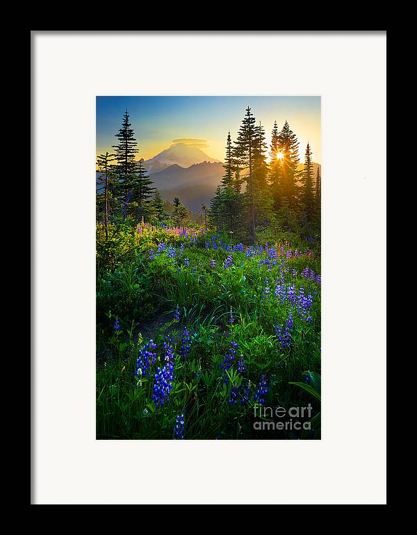 America Framed Print featuring the photograph Mount Rainier Sunburst by Inge Johnsson
