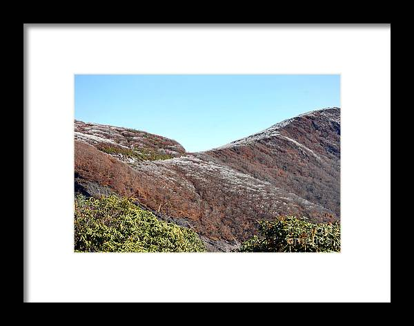 Scenic Tours Framed Print featuring the photograph Mountain Frost by Skip Willits