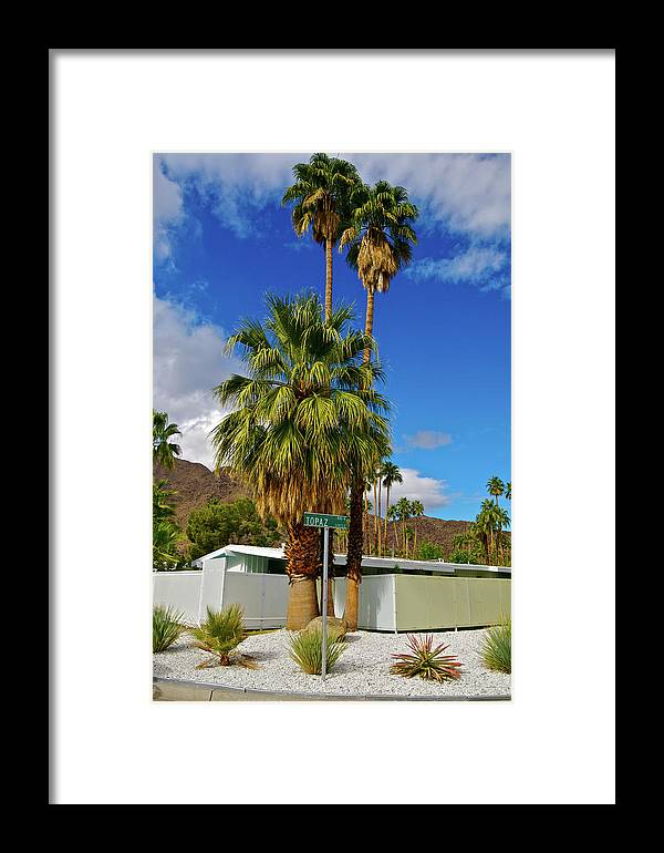 Fan Palm Tree Framed Print featuring the photograph Mountains, Plants & Mid-century Home In by Jaylazarin