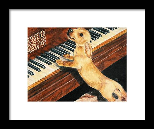 Purebred Dog Framed Print featuring the drawing Mozart's Apprentice by Barbara Keith
