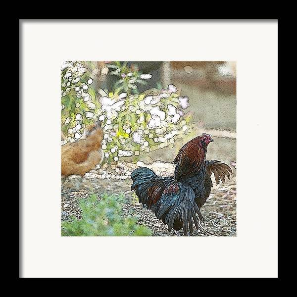 Rooster Art Framed Print featuring the digital art Mr. Rooster Struts by Artist and Photographer Laura Wrede