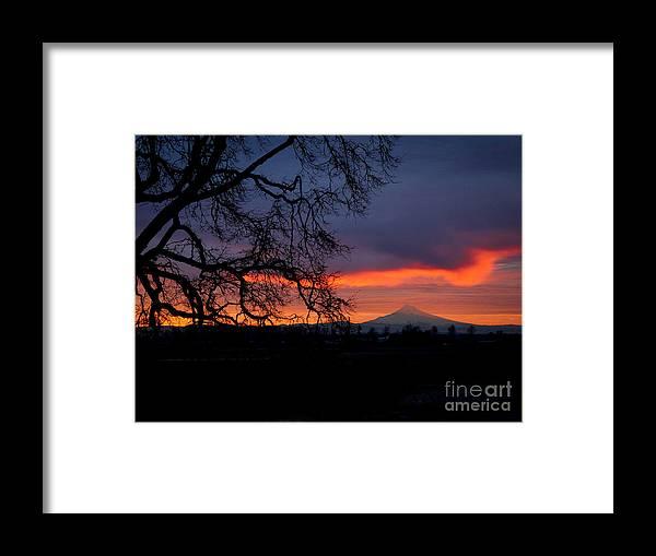 Mt. Hood Framed Print featuring the photograph Mt Hood Sunrise by Matt Hoffmann