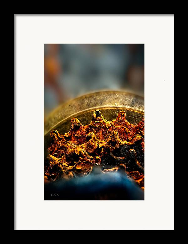 Gear Framed Print featuring the photograph Muddy Rusty Sprockets by Bob Orsillo
