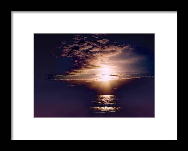 Seascape Framed Print featuring the photograph Mushroom by Steve Karol