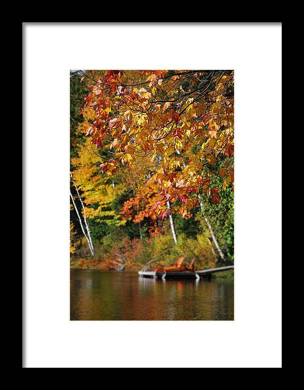 Muskoka Fall Autumn Leaves Chairs Lake Forest Framed Print featuring the photograph Muskoka Tales 1 by Daniel Matei