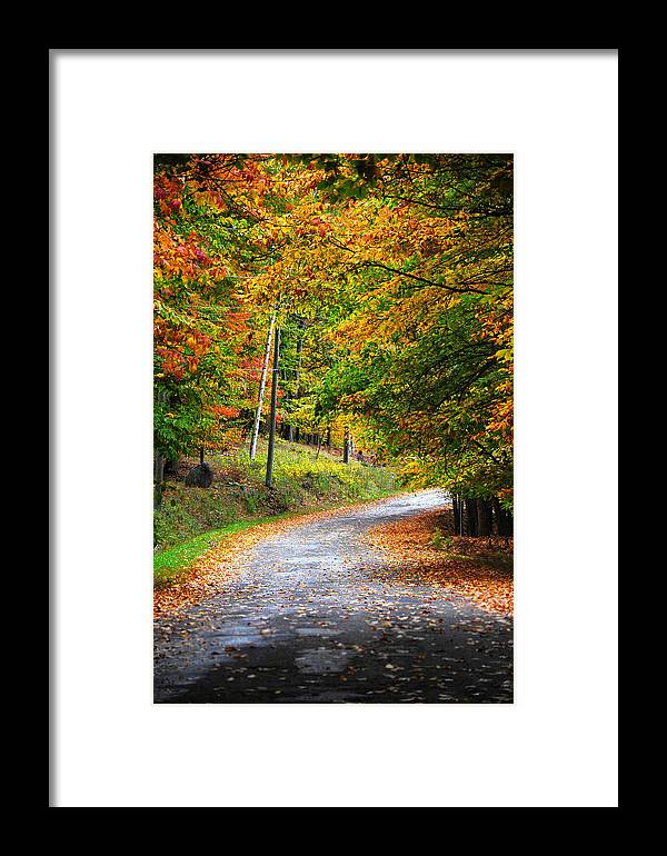 Muskoka Leaves Fall Autumn Road Covered Forest Framed Print featuring the photograph Muskoka Tales 5 by Daniel Matei