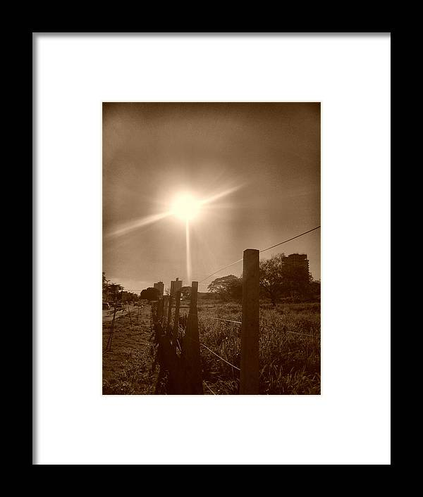 Sepia Framed Print featuring the photograph Mutum by Beto Machado