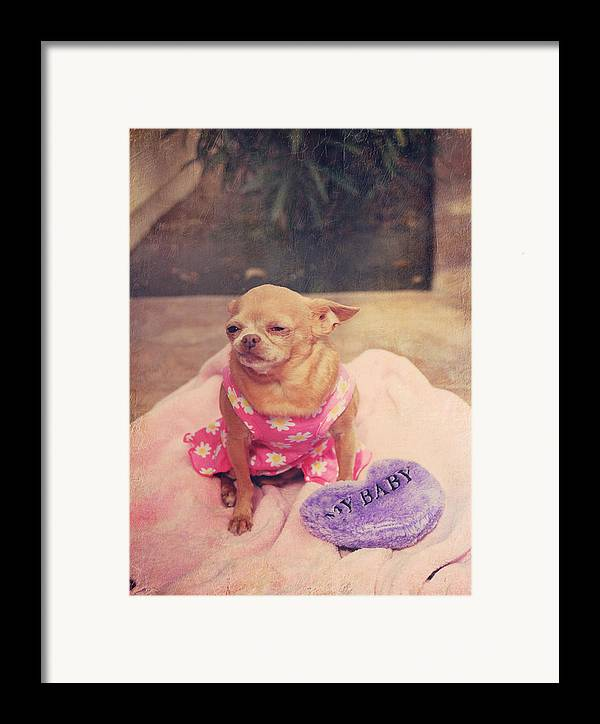 Dogs Framed Print featuring the photograph My Baby by Laurie Search