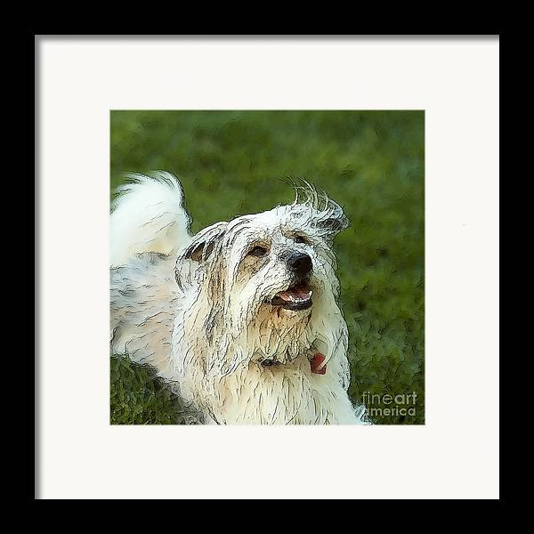 Pig Framed Print featuring the photograph My Schnitzel by Artist and Photographer Laura Wrede